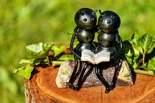 The wisdom of ants