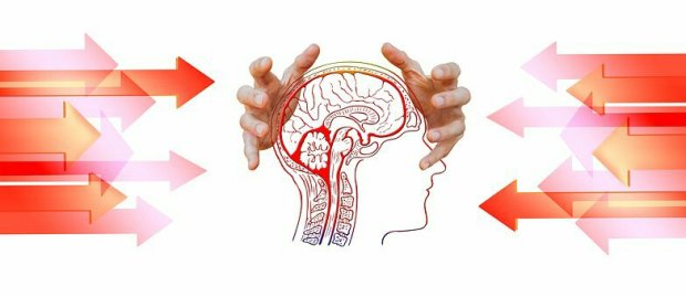 The brain power use